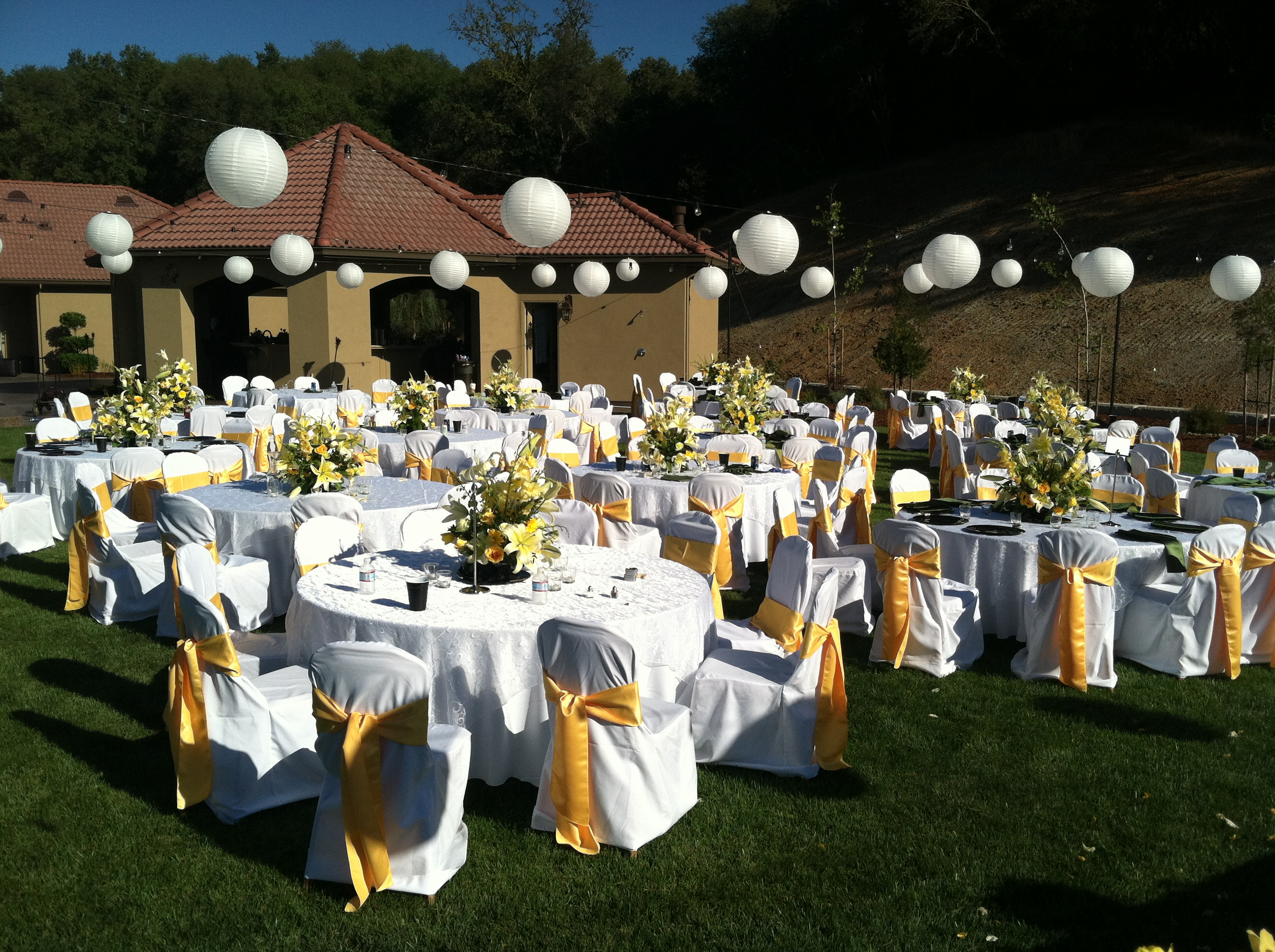 Outdoor Wedding Lighting Sonoma